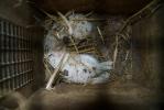 Kannus - Fur farm - 2019-5 - DSC04618-1.jpg