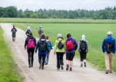 Eesti Loodusmuuseum kutsub juuni esimesel nädalavahetusel perepäevale ning rohelise linna retkedele