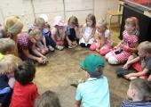 Eesti Loodusmuuseumi Suvemuuseumis saab loomi uurida