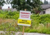 Euroopa Komisjon määras kogu Saaremaa seakatku tõkketsooni