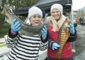 FOTOD! Tallinna kalafestival pakkus külastajatele mitmekülgseid maitseelamusi