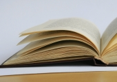 MISA ootab töid EV 100-le pühendatud esseekonkursile