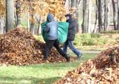 Abilinnapead annavad nõu: kuidas probleemseid naabreid aidata, lasteaiakohta saada ja linna puhtana hoida