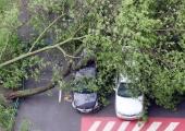Moskvas sai tormituule tõttu surma vähemalt 11 inimest