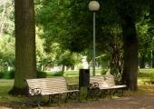 Linn teeb Kopli kalmistupargi korda