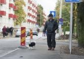 Kuldnoka tänav sai kõnnitee ja LED-valgustuse