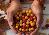 Toitumisekspert annab nõu: mida peaks sügisel oma toidusedelis muutma?