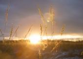 Esmaspäev tuleb külm ja päikesevõimalusega