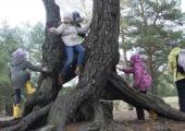 TELEFONIST VÄLJA: Kooliring õpetab lapsi uuesti õues mängima