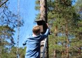 Nõmme kooliõpilased meisterdasid lindudele sada pesakasti