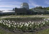 GALERII! Tallinna Botaanikaaed tähistas Eesti Vabariigi 100. sünnipäeva