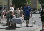 GALERII! Kadriorule lisas värvi Faehlmanni tänava festival