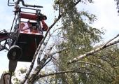 Tormituule tõttu on elektrita jäänud 13 000 majapidamist