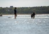 Saarte Hääle andmeil on seal kõige soojema mereveega rannad
