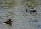 Tuukrid leidsid Mohni saare lähistel kaduma läinud sukelduja surnuna