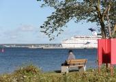 Põhja-Tallinn kinkis linnaosa elanikele EV 100 puhul 100 pinki