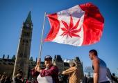 Kanada seadustas kanepi kasutamise mõnuainena
