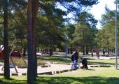 Algas ideekonkurss Männi pargi rekonstrueerimiseks