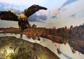 Loodusmuuseumi uus püsinäitus tutvustab Eesti soid