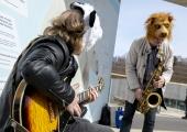 FOTOD JA VIDEO! Jazzkaare linnaruumikontsert loomaaias