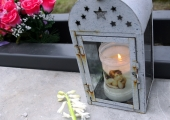 Linn otsib 900 000 euroga kalmistuhoone ja kolumbaariumi ehitajat