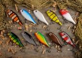 Eesti kalastustipud kohtuvad pühapäeval Tallinna Lauluväljakul