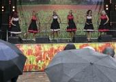 FOTOD! Lõuna-Eesti tõi Tallinna lusti ja laulu