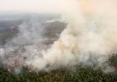 Brasiilia saatis väed võitlusse Amazonase põlengutega