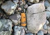Möödunud neljapäeval tehti kahjutuks Paljassaare teelt leitud mürsk