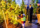 Presidendi kantselei ees avati põnev jõulumets