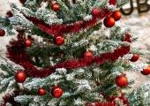 Börsi käiku kaunistavad peagi mudilaste poolt kaunistatud jõulupuud