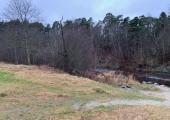 Pirita jõeorus alustati niitude taastamistöödega