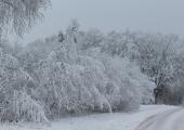 VIDEO! 80 aastat tagasi oli Eestis rekordiliselt külm