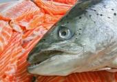 Alanud aasta kala on lõhe