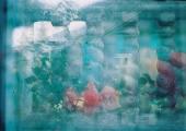 """Galerii Positiiv alustab uue näituseformaadiga """"Kunstnik on kohal"""". Triinu Soikmets ootab näitusele """"See linn on minu!"""""""