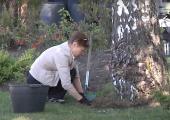 VIDEO: Kopli Ametikooli õpilased saavad esimesed töökogemused loomaaiast