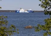 Tallinna Sadam: laevaühendused Soomega on tihedamad kui kunagi varem