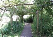 Tallinna Botaanikaaed kutsub tervendavate aedade teemapäevale