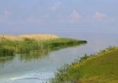 Spetsialistid: Peipsi järve suubuvate jõgede seisund paraneb