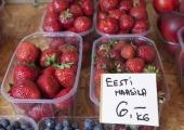 Aller: hakkame hindama maasikakasvatajate kahju