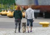 Mupo alustab Põhja-Tallinnas reide: Koer rihma otsa!