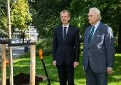 PILDID JA VIDEO! Tammsaare parki istutati linnade ja valdade liidu juubeliks puu