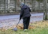 Põhja-Tallinnas algab lehekottide äravedu
