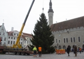 Tallinna Raekoja plats on reedest jõuluehteis