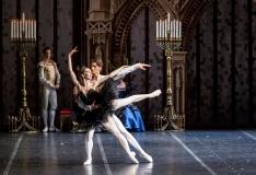 Tallinn toob Estoniasse maineka Peterburi Riikliku Balletiteatri trupi