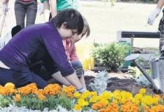 Lastekaitsepäeval istutavad õpilased tänavatele 11 000 lille