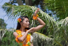 Hawaii tahab hakata kodanikupalka katsetama