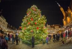 FOTOD JA VIDEO! Särama löönud kuusk avas jõuluturu