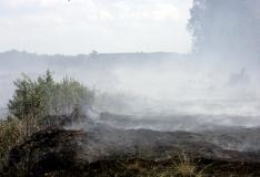Rääma rabapõleng on levinud 40 hektarile