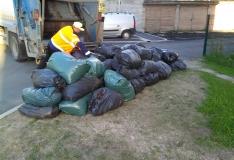 Kristiine aitab tasuta aia- ja haljastusjäätmete ära vedada